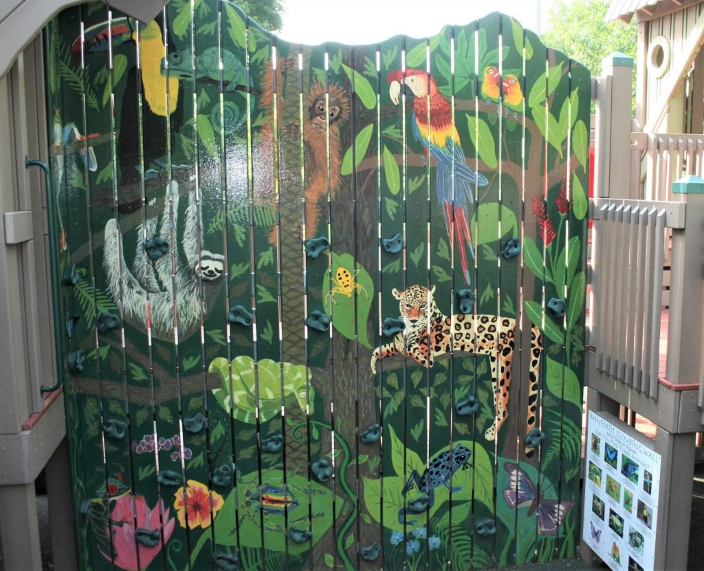 Rainforest Climbing Wall Painted by Teresa Nguyen