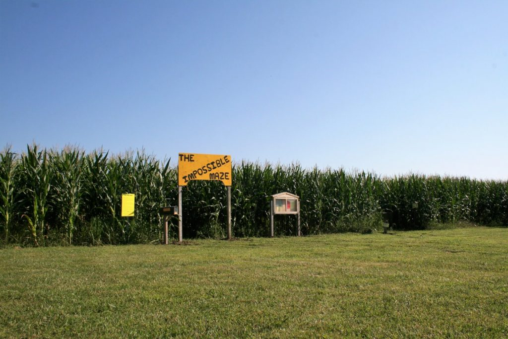 Skelly's 2018 corn maze